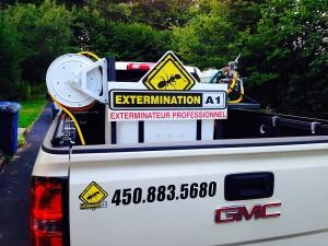 exterminateur spécialisé en fourmis - araignées et coccinelles